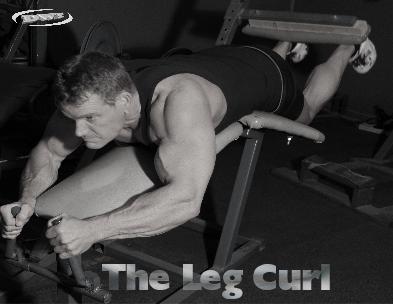 The leg curl