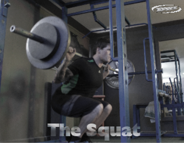 Rear barbell squat
