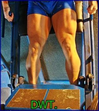 Bodybuilder leg pressing
