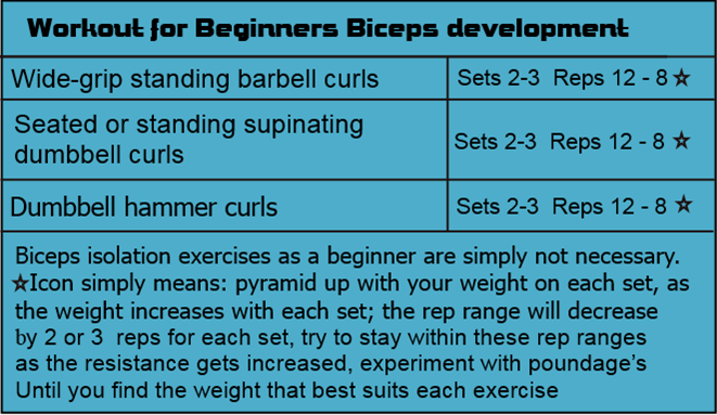 Beginners biceps workout chart