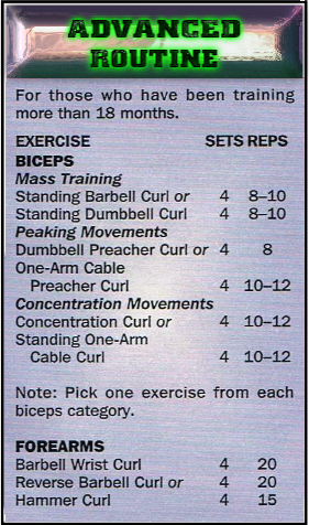 Advanced biceps routine