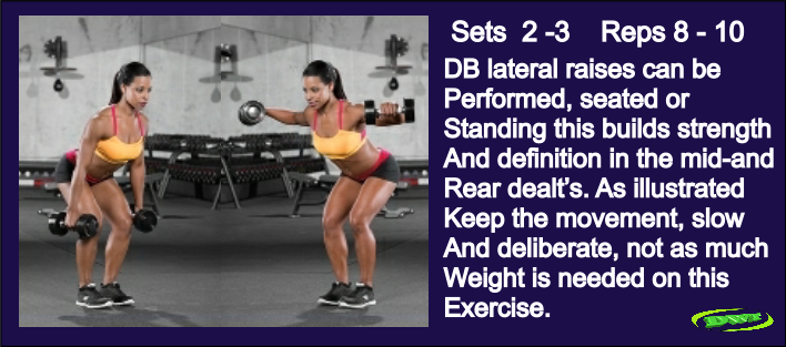 Women's Dumbbell laterals