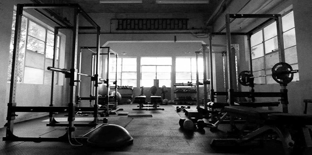 Free weights leg day