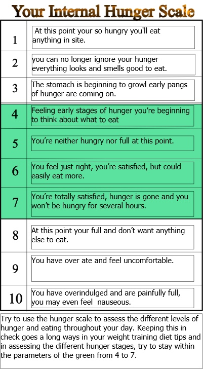 Internal hunger scale