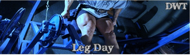 Intermediate leg day