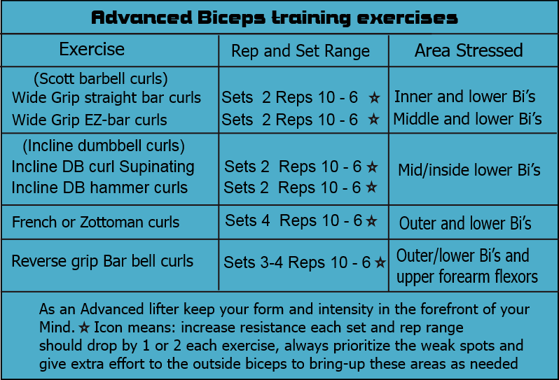 Advanced biceps training exercises