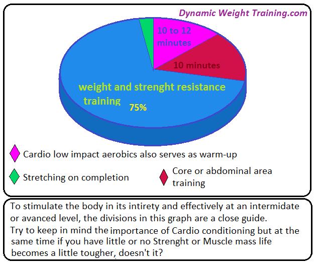Pie chart weight training vs cardio