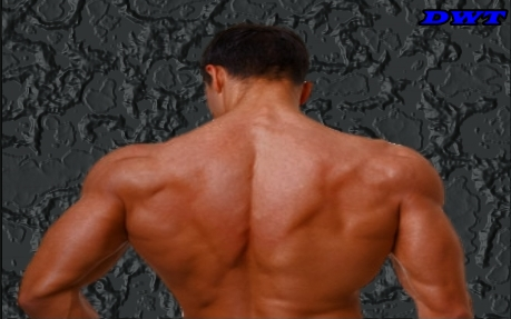 Upper back development