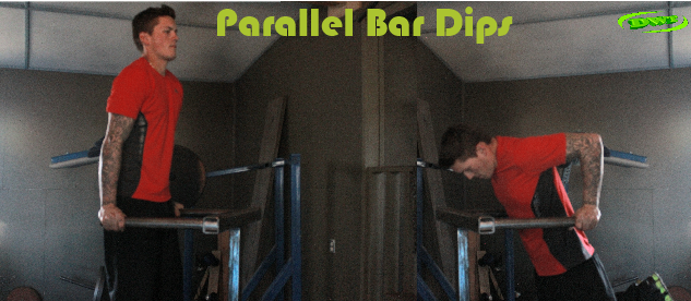 Build stamina with Bar dips