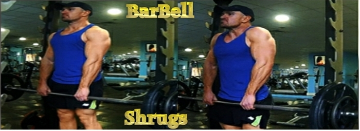 Intermediate barbell shrugs