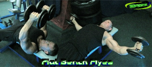 Flat bench DB flyes