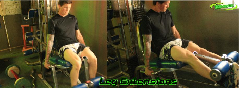 Beginners leg extensions
