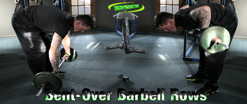 Beginners  bent over barbell rows