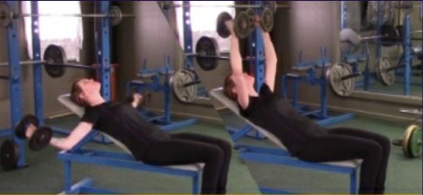 Weight Training Program For Women