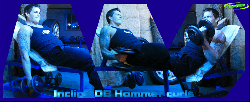 Incline DB hammer curls
