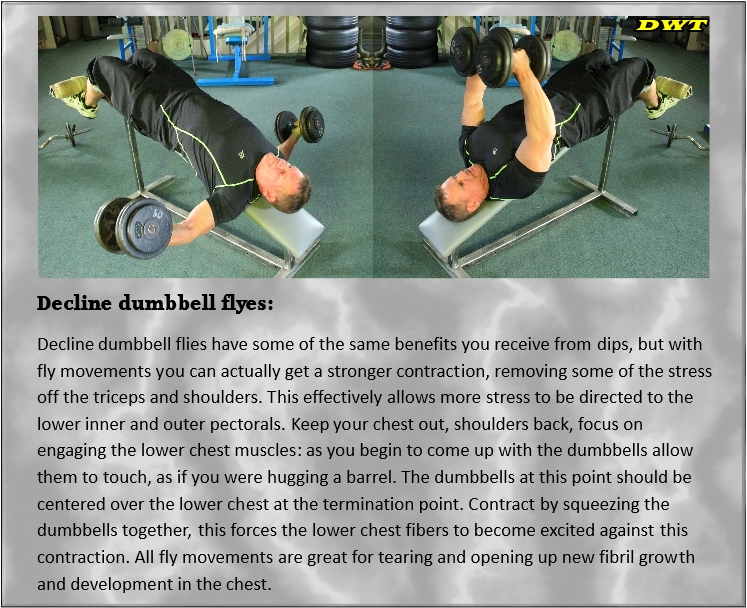 Decline dumbbell flyes