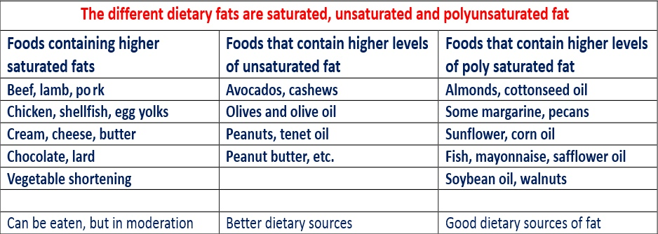 Healthy and unhealthy fats