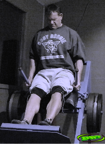 Incline Hack, Calf Raises,