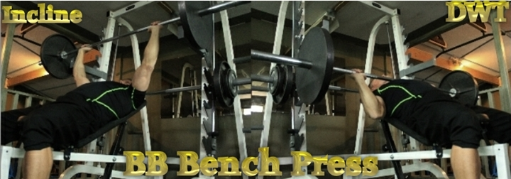 Intermediate Incline barbell press