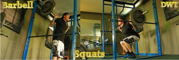 Intermediate squats
