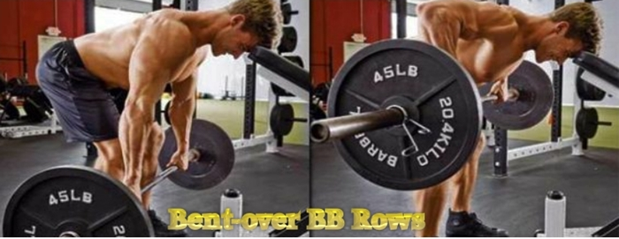 Intermediate bent over barbell row