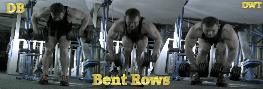 Intermediate bent over dumbbell row