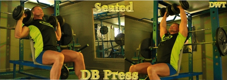Intermediate seated dumbbell press