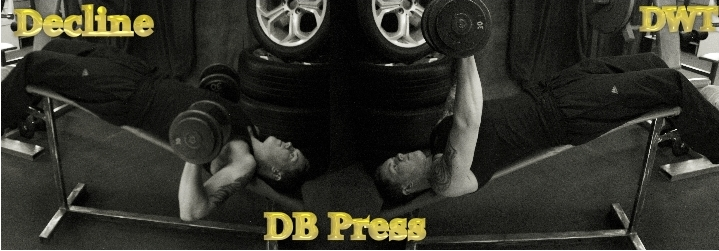 Intermediate decline dumbbell press
