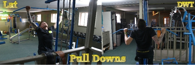 Intermediate LAT pulldown's