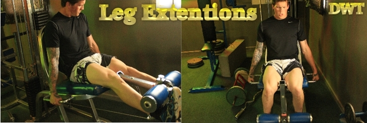 Intermediate leg extensions