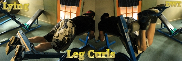 Intermediate leg curls