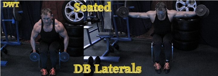 Intermediate seated dumbbell laterals