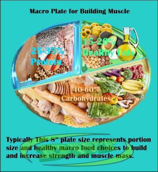 Building Muscle Macro plate