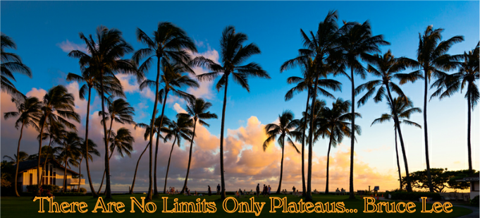 No limits only Plateaus