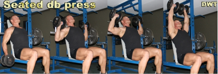 Seated DB shoulder press