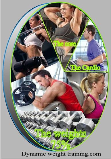 Weight training pie chart