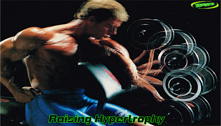 Weight training hypertrophy