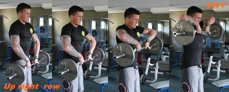 EZ bar upright rows