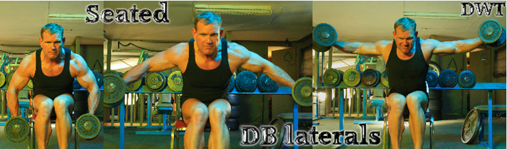 Seated lateral dumbbell raises