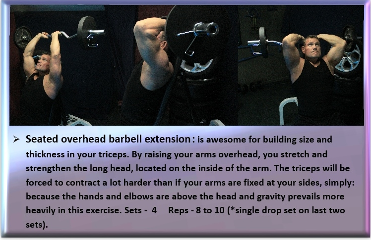 Seated triceps extensions