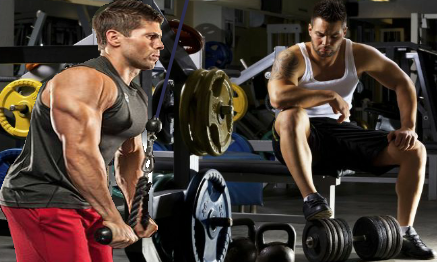 Bodybuilding and Weight Training