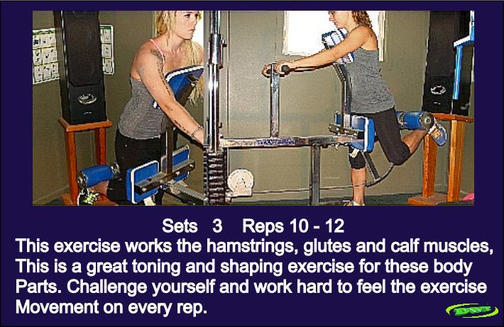 Women and leg training