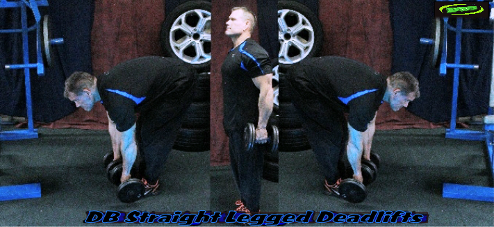 Dumbbell Straight Legged Deadlifts