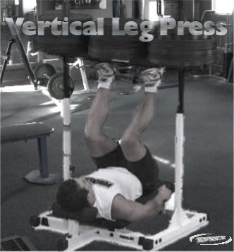 The vertical leg press