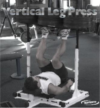 The vertical leg press