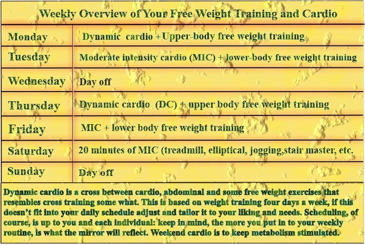 How To Incorporate Cardio And Free Weight Training Into A Weekly Routine