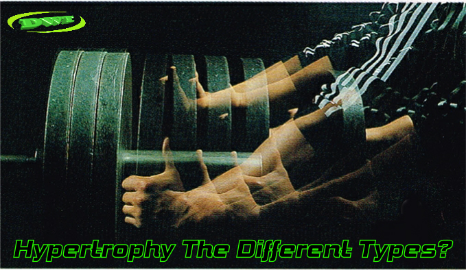 Hypertrophy different types
